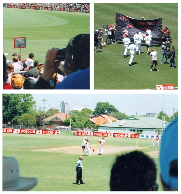Windy hill Cricket montage